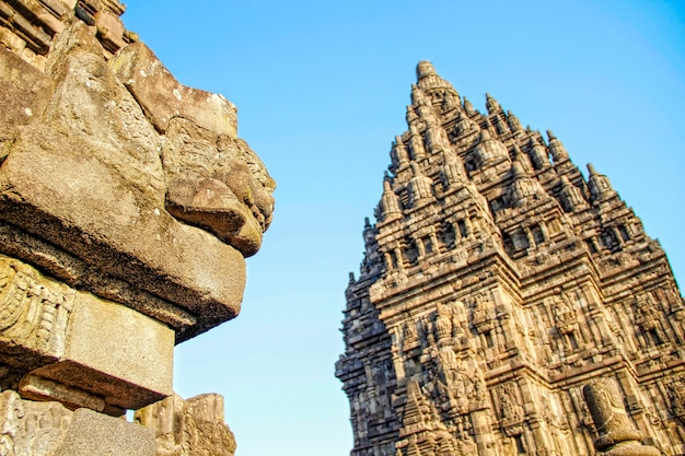 Una bella figura nel tempio di prambanan. indonesia