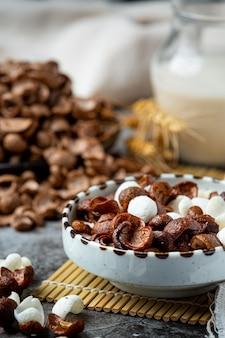Una colazione a base di cereali, cereali al cioccolato e latte.