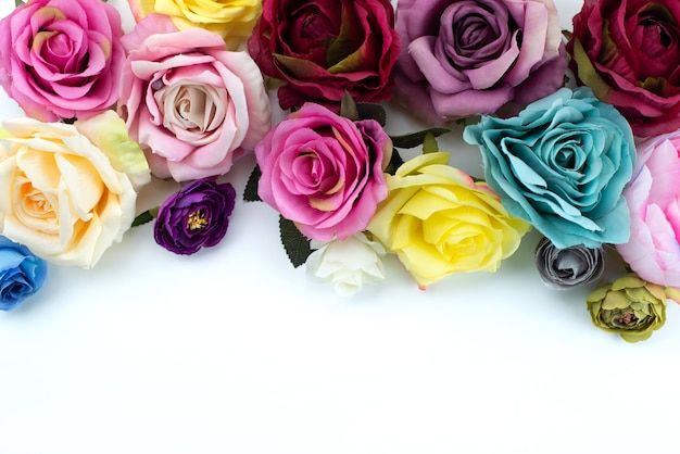 Una composizione vista dall'alto di fiori colorati e belli su bianco, pianta fiore di colore