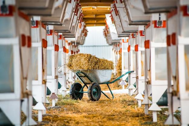Una fattoria di coniglio grande e moderna