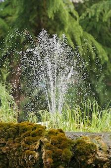 Una fontana nel giardino