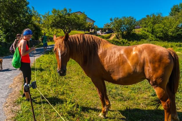 Una giovane donna che guarda un cavallo sulla costa del monte igueldo, guipuzcoa, paesi baschi. escursione da san sebastián alla città di orio attraverso il monte igeldo camminando con 3 amici.