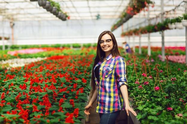 Una giovane ragazza con gli occhiali si prende cura dei fiori di salvia in una serra