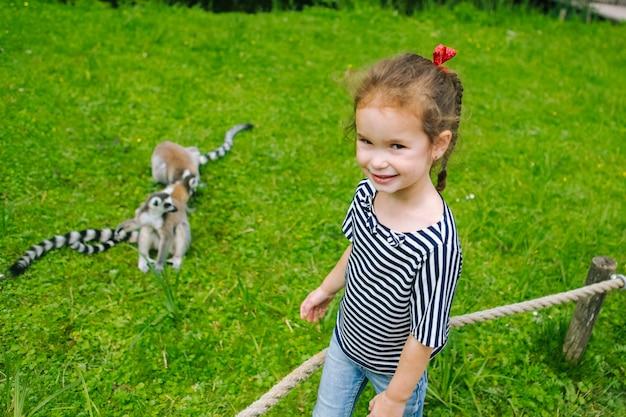 Una giovane ragazza con i capelli ricci di braun si diverte con lemure dalla coda ad anelli. lemure catta guardando la fotocamera