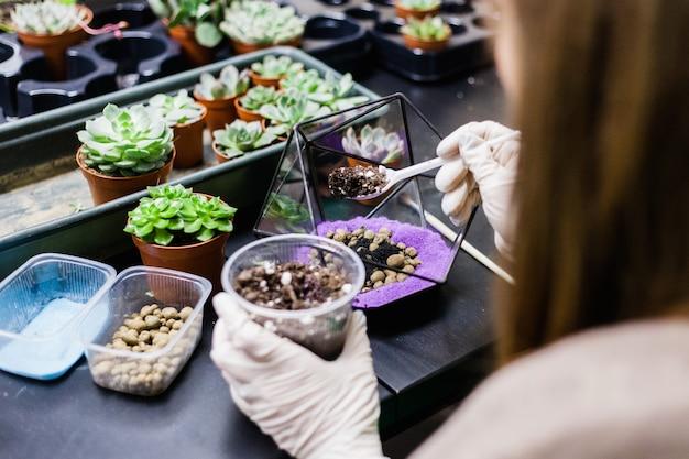 Una master class per piantare cactus e sukkulentov sotto forma di vetro