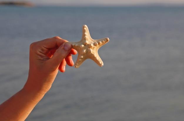 Una persona che tiene una stella di mare (stella marina) in una mano sulla spiaggia con fondo sabbioso al giorno soleggiato. concetto di sfondi vacanze estive.