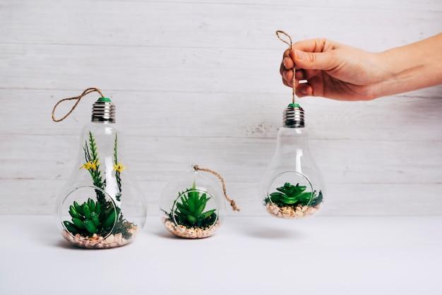 Una pianta del cactus della tenuta della persona dentro la lampadina sullo scrittorio bianco contro la parete di legno