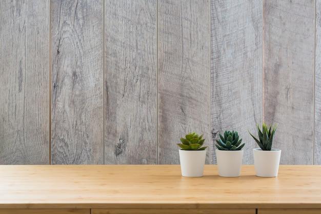 Una piccola pianta di tre succulenti in vasi bianchi sullo scrittorio contro la parete di legno