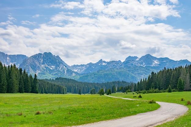 Una pittoresca valle verde tra le alte montagne.