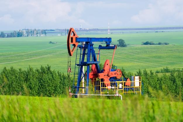 Una pompa di olio estragga l'olio nel mezzo di campi verdi