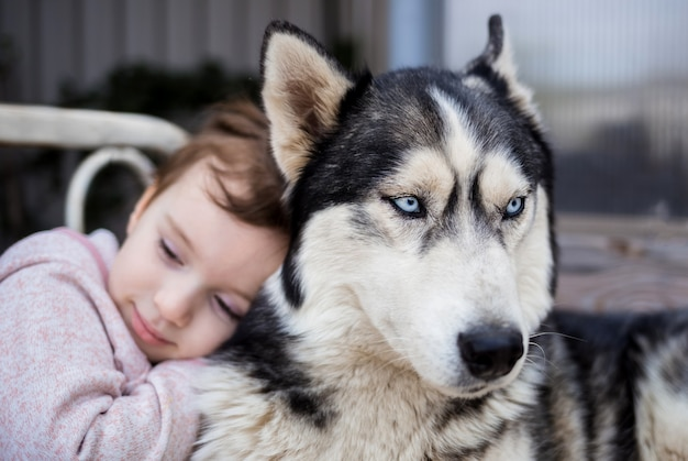 Una ragazza abbraccia il suo cane. un cane è il migliore amico di una persona. cane husky