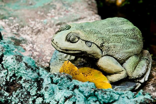 Una statua di rana