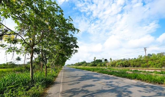 Una strada di campagna vicino alla ferrovia