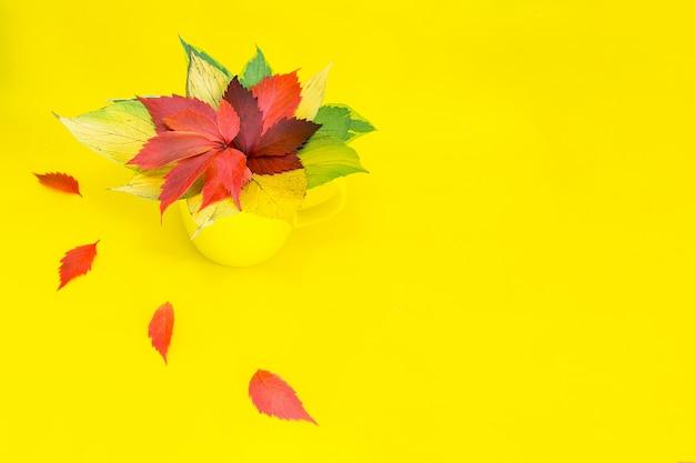 Una tazza gialla si trova su un tavolo giallo con un mazzo di fogliame luminoso di alberi.