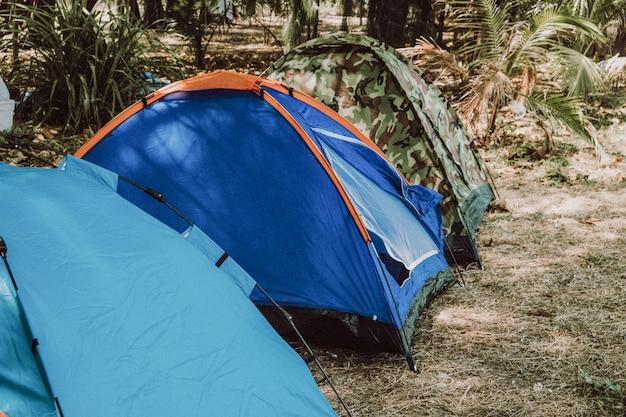 Una varietà di tende da campeggio colori, campeggio al mare, sulla spiaggia, buona atmosfera.