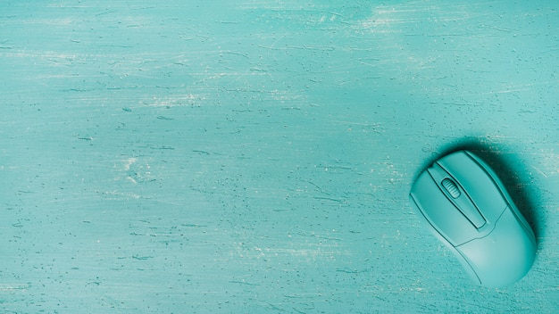 Una vista aerea del mouse su sfondo turchese