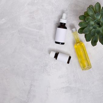 Una vista aerea della pianta del cactus con le bottiglie di olio essenziale sopra il muro di cemento grigio