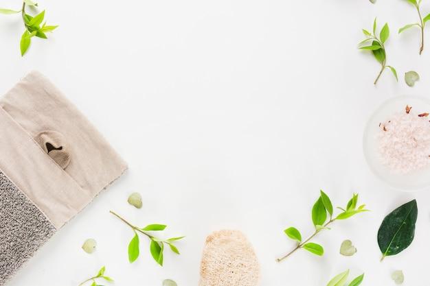 Una vista aerea delle foglie verdi della luffa e del sale si è sparsa su fondo bianco