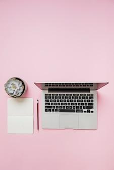 Una vista dall'alto della pianta di cactus; taccuino; matita e un computer portatile aperto su sfondo rosa