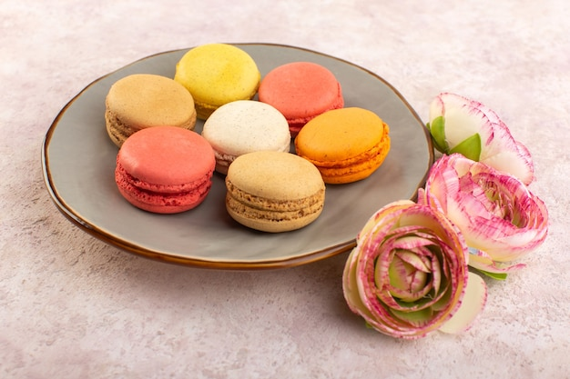 Una vista frontale colorati macarons francesi con rose sul colore rosa biscotto torta scrivania