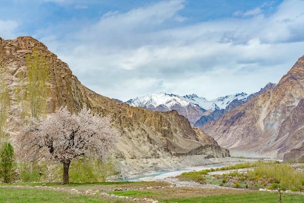 Una vista panoramica della valle di turtuk e il fiume shyok.