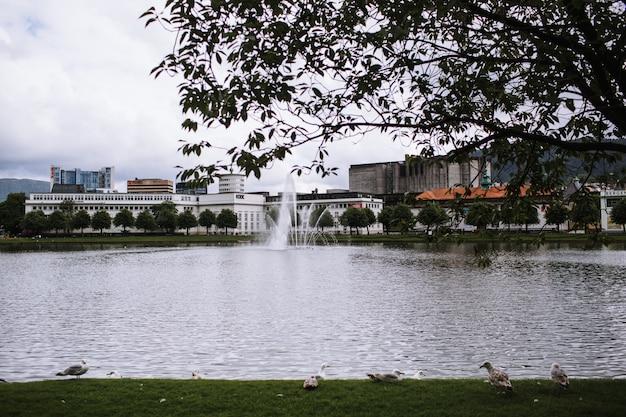 Una vista sul lago nel parco, la città di bergen
