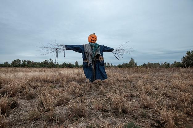 Uno spaventapasseri spaventoso con una testa di zucca di halloween in un campo in tempo nuvoloso.