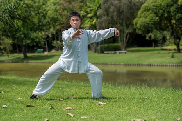 Uomo asiatico che risolve con il tai chi di mattina al parco, arti marziali cinesi
