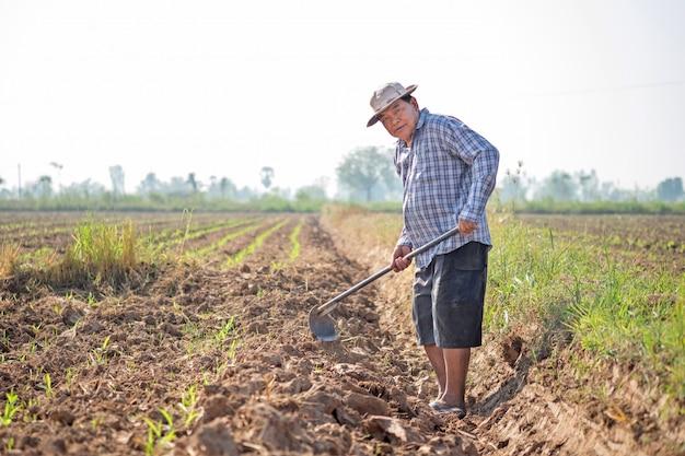 Uomo asiatico che spala terreno con una zappa nel campo di grano