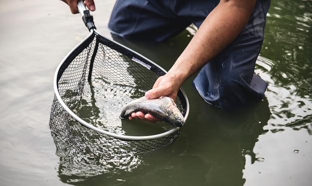 Uomo che pesca in riva al lago