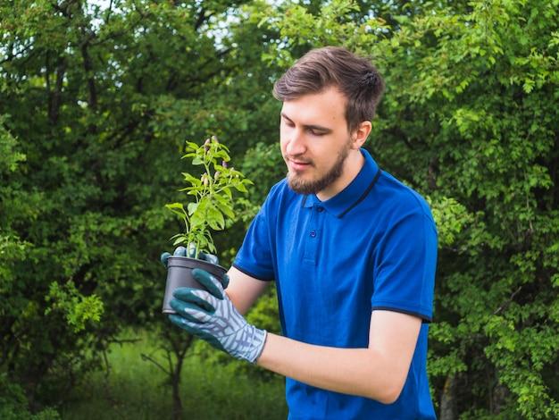Uomo che pianta piccola pianta in vaso