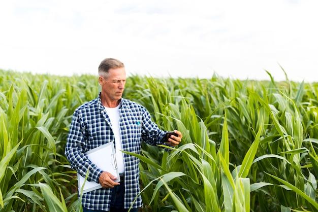 Uomo che prende un selfie in un campo di mais
