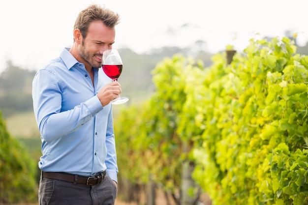 Uomo che sente l'odore del vino rosso
