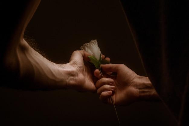 Uomo che tiene una bellissima rosa bianca