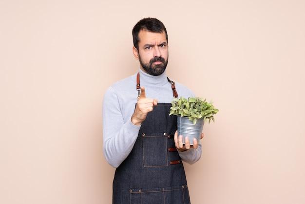 Uomo che tiene una pianta frustrata e che punta verso la parte anteriore