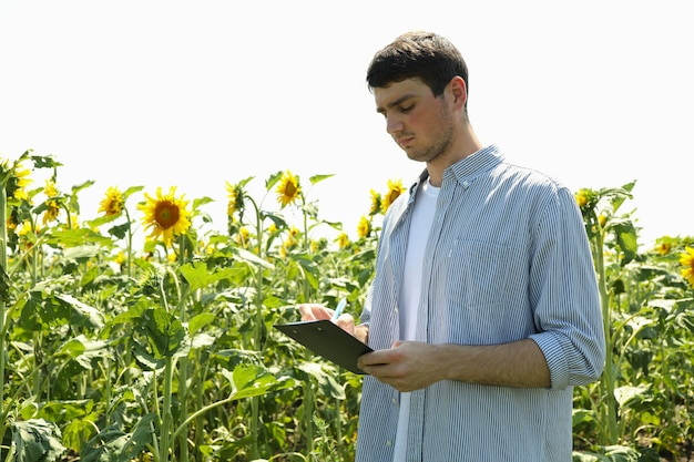 Uomo con appunti nel campo di girasoli.