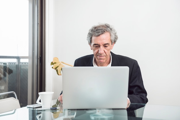 Uomo d'affari maggiore che utilizza computer portatile nell'ufficio