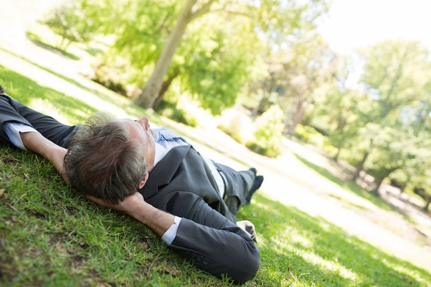 Uomo d'affari rilassante nel parco