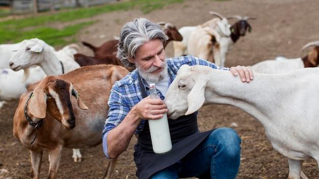 Uomo di alto angolo con una bottiglia di latte di capra