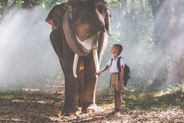 Uomo e bambini che vanno nella giungla con l'elefante, momenti di stile di vita dal nord della thailandia