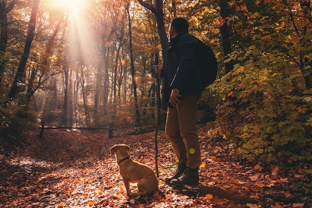 Uomo e cane nella foresta
