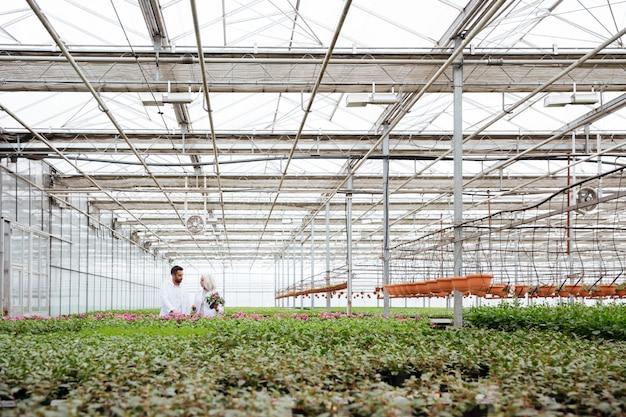 Uomo e donna che parlano mentre si lavora con le piante