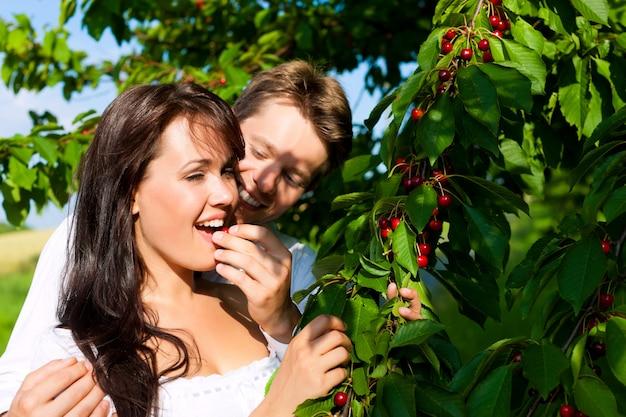 Uomo felice che alimenta le sue ciliege della donna dall'albero
