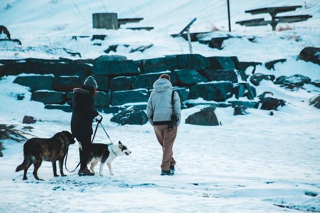 Uomo in giacca grigia che sta accanto al cane in bianco e nero su terra innevata durante il giorno