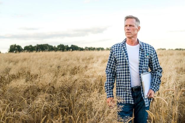 Uomo in un campo di grano che osserva via