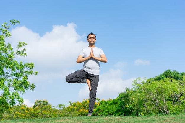Uomo indiano sereno che sta nella posa di yoga dell'albero in parco con i cespugli verdi