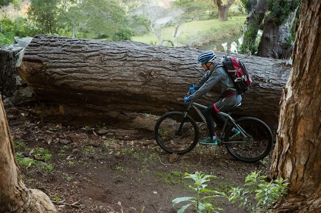 Uomo maschio mountain bike in sella alla bicicletta nella foresta