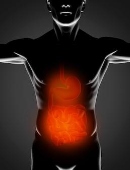 Uomo nero con stomaco rosso e intestino tenue