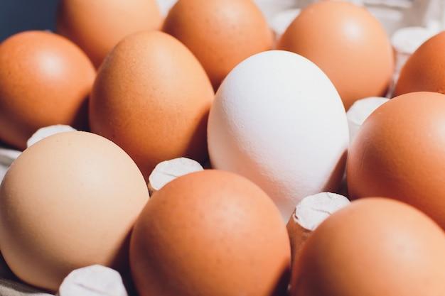 Uova bianche del pollo di fronte a rosso in una scatola di cartone con spazio vuoto ,.