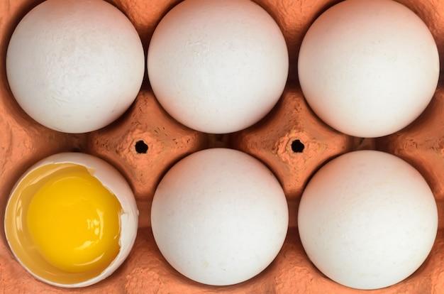 Uova bianche intere del pollo ed un uovo rotto in un contenitore del cartone per stoccaggio e trasporto isolati su fondo bianco